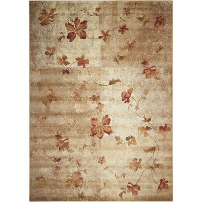 Dundridge Hand-Woven Brown/Red Area Rug Rug Size: 36 x 56