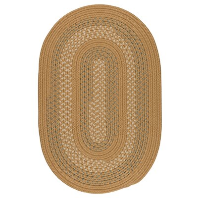 Knudtson Bronze Indoor/Outdoor Area Rug Rug Size: Oval 12 x 15