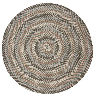 Lettie Driftwood Teal Area Rug Rug Size: Oval 10 x 13
