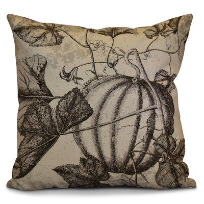 Miller Antique Pumpkin Floral Outdoor Throw Pillow Size: 18 H x 18 W x 2 D