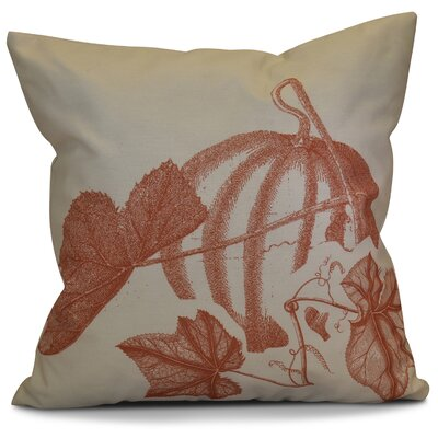 Miller Stagecoach Floral Outdoor Throw Pillow Color: Rust, Size: 18 H x 18 W x 2 D