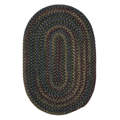 Lippold Charcoal Area Rug Rug Size: Oval 2 x 8