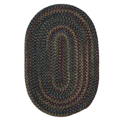 Lippold Charcoal Area Rug Rug Size: Oval 2 x 6