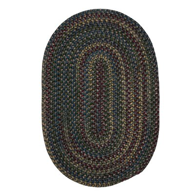 Lippold Charcoal Area Rug Rug Size: Oval 3 x 5
