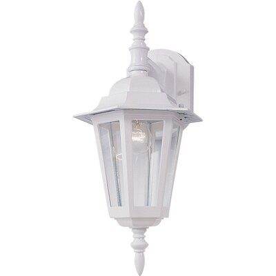 Shifflett 1-Light Outdoor Wall Lantern Finish: White