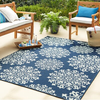 Barker Aqua Indoor/Outdoor Area Rug Rug Size: 8 x 10