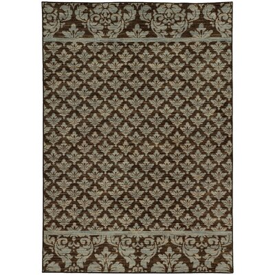 Alicia Floral Brown/Blue Area Rug Rug Size: Rectangle 7'10