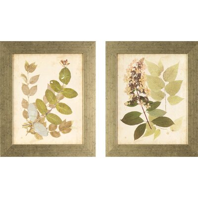 Nature 2 Piece Framed Graphic Art Set