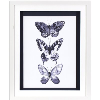 Monochrome Butterflies Framed Graphic Art