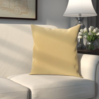 Eastvale Solid Decorative Outdoor Pillow Size: 18 H x 18 W x 1 D, Color: Emperor