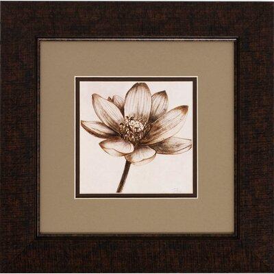 Sepia Lotus 2 Piece Framed Painting Print Set ACOT2535 34911580