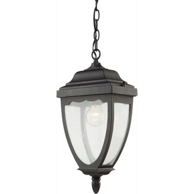 Boise 1-Light Outdoor Pendant Finish: Black