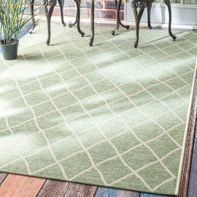 Kassik Green Indoor/Outdoor Area Rug Rug Size: 86 x 122