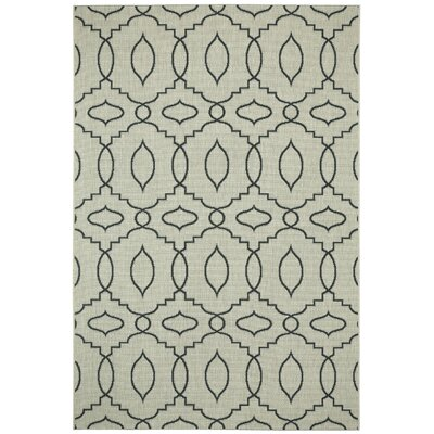 Birchover Cinders Green Moor Outdoor Area Rug Rug Size: Rectangle 53 x 76