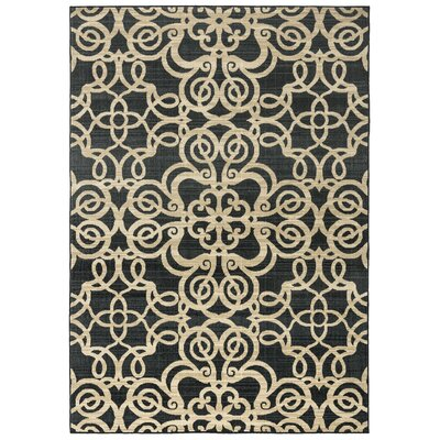 Greenside Black Area Rug Rug Size: Rectangle 53 x 77