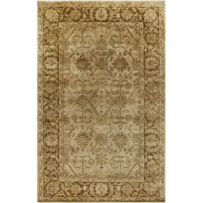 Anderle Olive Area Rug Rug Size: Rectangle 9 x 13