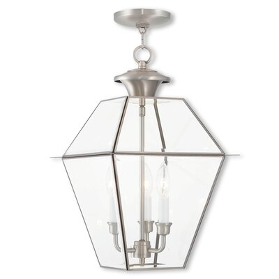 Orchard Lane Foyer Pendant Size: 19 H x 12 W, Finish: Brushed Nickel