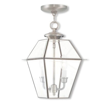 Orchard Lane Foyer Pendant Size: 15 H x 9 W, Finish: Brushed Nickel