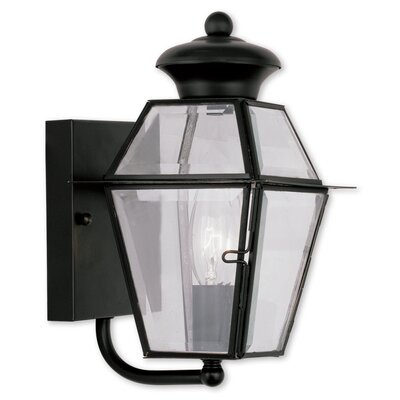 Fulmore 1-Light Outdoor Sconce Finish: Black