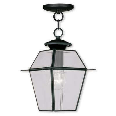 Fulmore 1-Light Outdoor Hanging Lantern