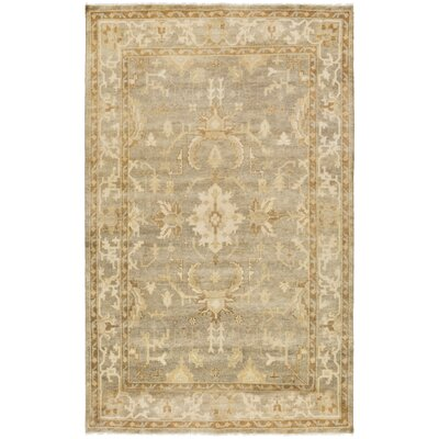 Moline Light Gray/Beige Area Rug Rug Size: Rectangle 36 x 56