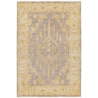 Moline Gold/Gray Area Rug Rug Size: Rectangle 9 x 13
