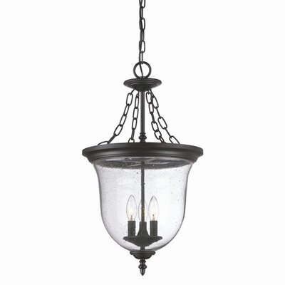 Minden 3-Light Outdoor Pendant Finish: Matte Black
