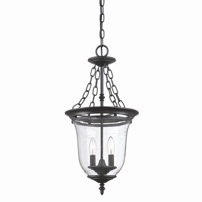 Minden 2-Light Outdoor Pendant Finish: Matte Black