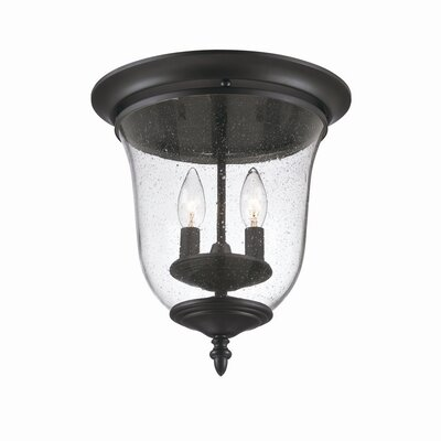 Minden 2-Light Flush Mount Finish: Matte Black