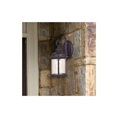 Alcott Hill Morrissey 1-Light Outdoor Wall Lantern
