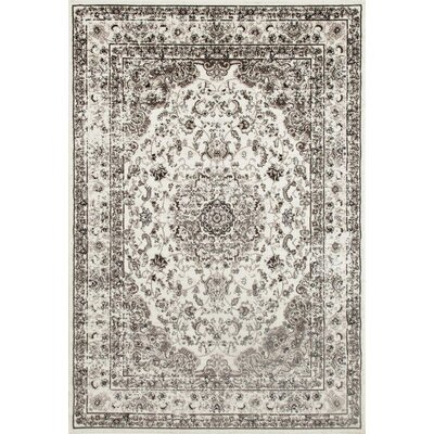 Murphysboro Cream Indoor/Outdoor Area Rug Rug Size: 52 x 72
