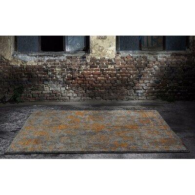 Murphysboro Gray Indoor/Outdoor Area Rug Rug Size: 5'2