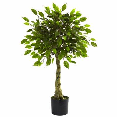 Ashleigh Faux Ficus Tree