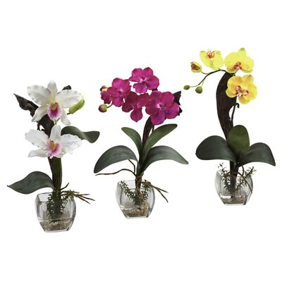Mixed Orchid with Cube Flowers Color: White/Beauty/Yellow ACOT4147 38022992