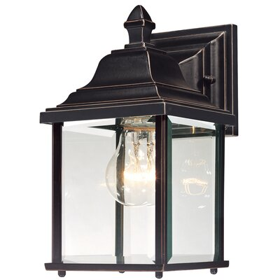 Oren 1-Light Outdoor Wall Lantern Finish: Antique Bronze