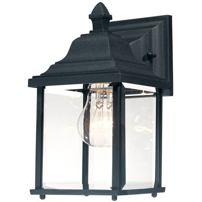 Oren 1-Light Outdoor Wall Lantern Finish: Black