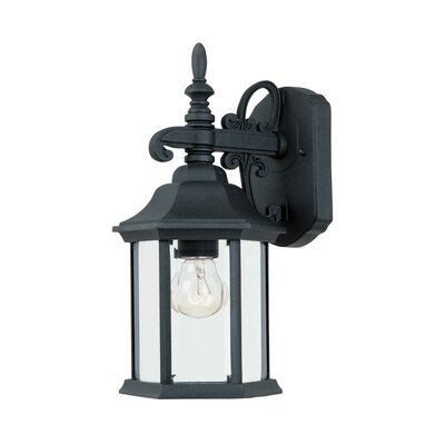Castellanos 1-Light Outdoor Wall Lantern