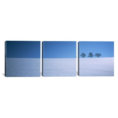 Footprints on a Snow Covered, Peter, Black Forest, Germany 3 Piece Photographic Print on Wrapped Canvas Set Size: 12