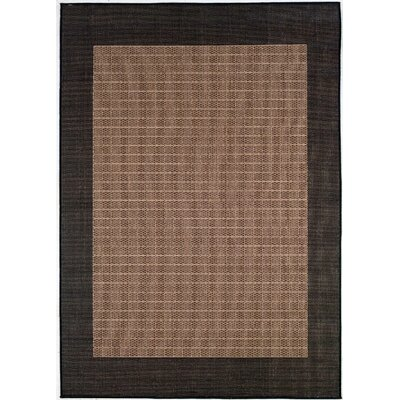Owen Checkered Field Cocoa/Black Indoor/Outdoor Area Rug Rug Size: Rectangle 2 x 37