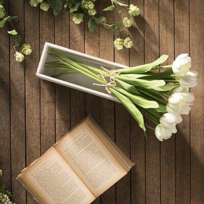 Tulip Branch Flower Color: White