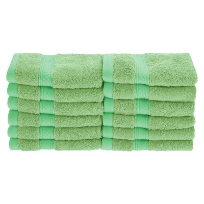 Hyde Rayon Soft and Absorbent Wash Cloth Color: Spring Green