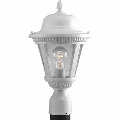 Triplehorn 1-Light Incandescent Lantern Head Finish: White