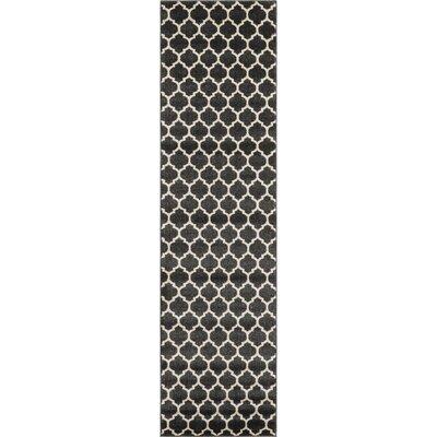 Emjay Black Area Rug Rug Size: Runner 27 x 10