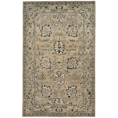 Eugenie Hand-Tufted Brown Area Rug Rug Size: 5 x 8
