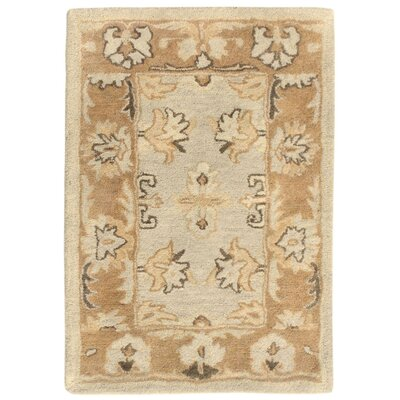 Petra Hand-Tufted Beige Area Rug Rug Size: 36 x 56