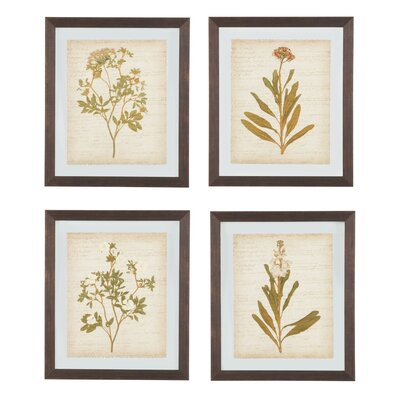 Alcott Hill 4 Piece Framed Painting Print Set