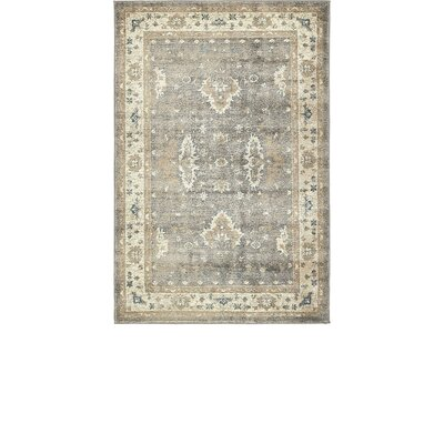 Jaiden Gray Area Rug Rug Size: Rectangle 4 x 6