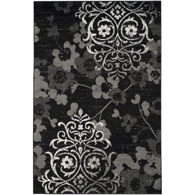 Adirondack Black/Silver Area Rug Rug Size: Rectangle 51 x 76