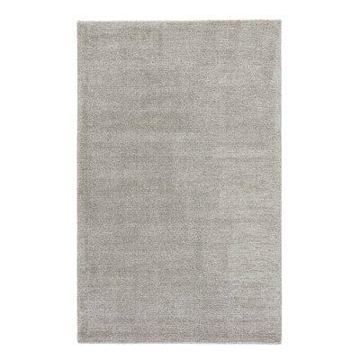 Windridge Hand Woven Silk Rug Rug Size: Rectangle 2 x 3