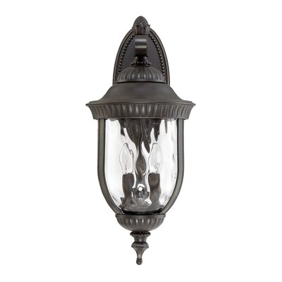 Brannon Walnut Outdoor Wall lantern Size: 23.25 H x 10 W